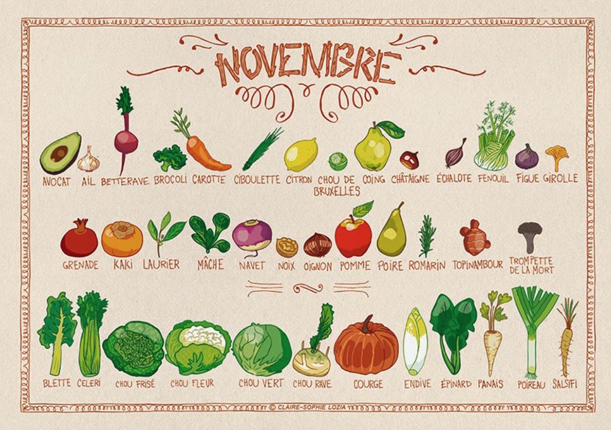 Tableau des légumes de novembre